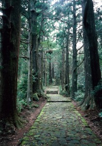 熊野参詣道中辺路大門坂